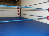 Boxing Wrestling Ring