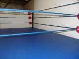 Boxing Wrestling Ring