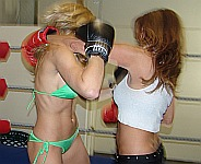 Women Boxing Catfight Girl on Girl