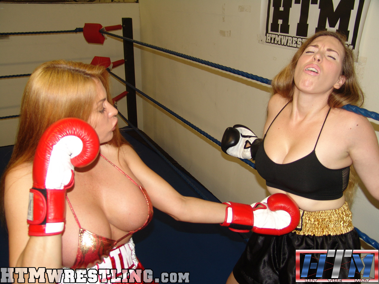 Busty big d nuts babes now